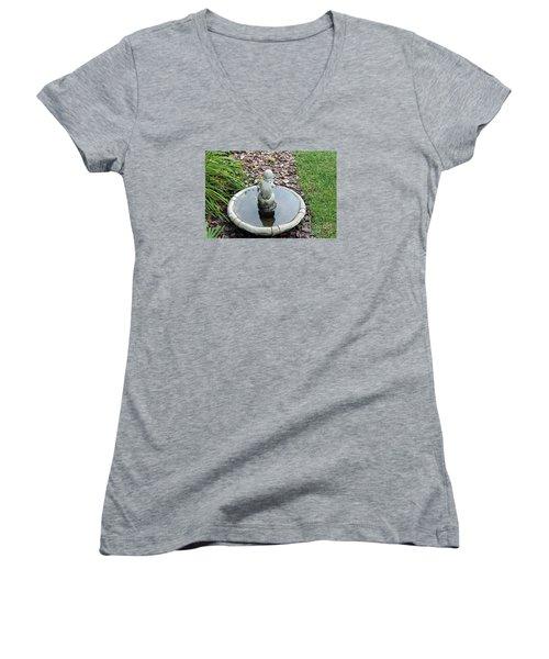 Boy In A Bird Bath Women's V-Neck T-Shirt