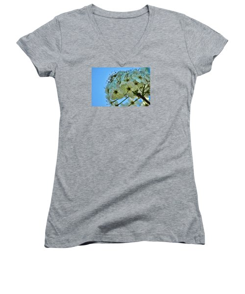 Bradford Pear I Women's V-Neck T-Shirt (Junior Cut) by Lesa Fine