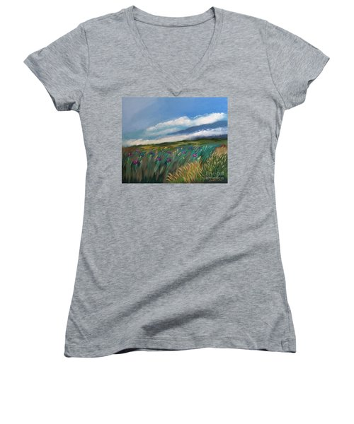 Breezy Day At Mauna Kea Women's V-Neck (Athletic Fit)