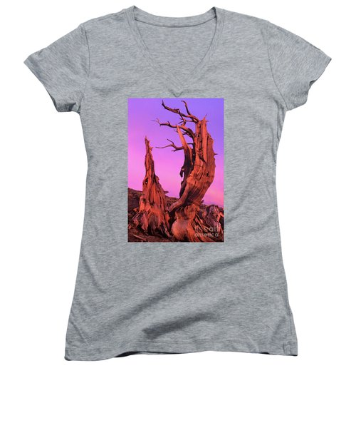 Women's V-Neck T-Shirt (Junior Cut) featuring the photograph Bristlecone Pine At Sunset White Mountains Californa by Dave Welling
