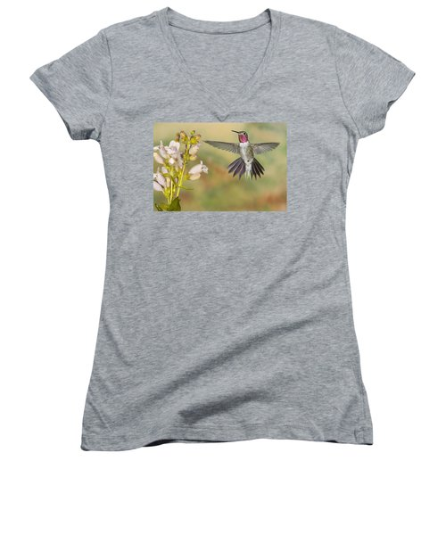 Broad Tailed Hummingbird 2 Women's V-Neck (Athletic Fit)