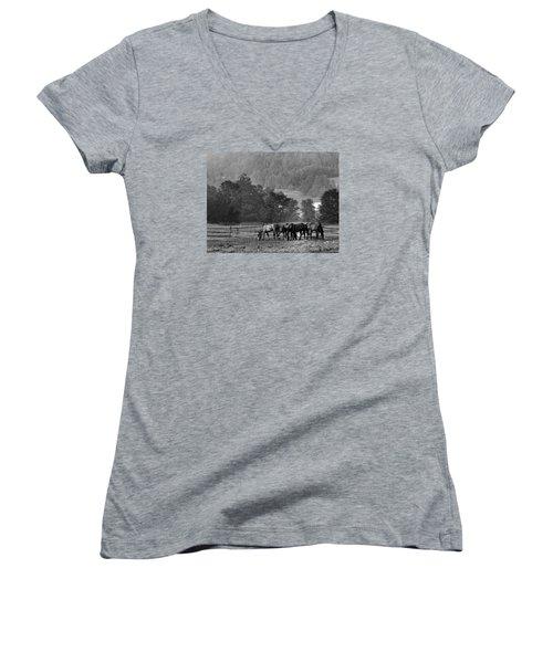 Women's V-Neck T-Shirt (Junior Cut) featuring the photograph Broodmares by Joan Davis