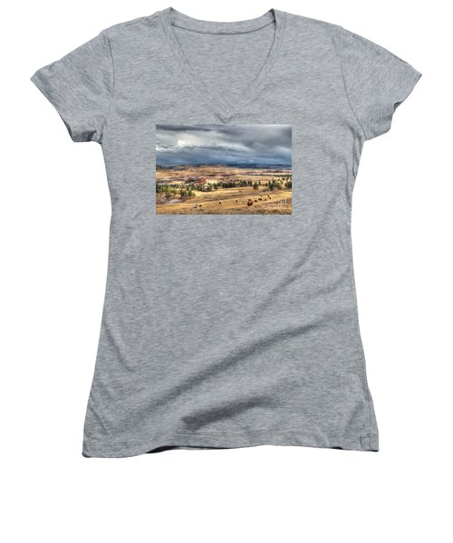 Buffalo Before The Storm Women's V-Neck T-Shirt