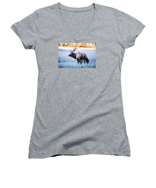 Women's V-Neck T-Shirt (Junior Cut) featuring the photograph Bull Elk And Cow by Paul Mashburn