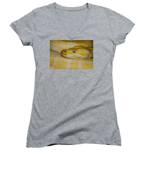 Burmese Python Women's V-Neck T-Shirt