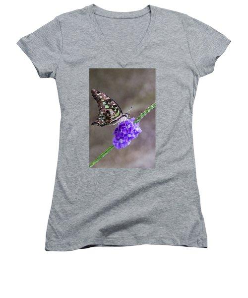 Butterfly - Tailed Jay I Women's V-Neck