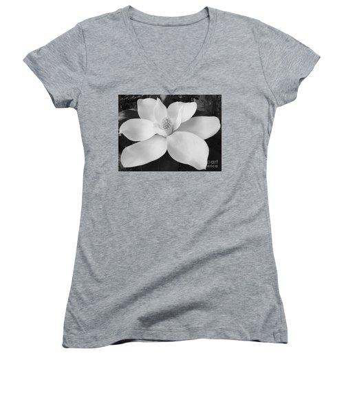 B W Magnolia Blossom Women's V-Neck T-Shirt (Junior Cut) by D Hackett