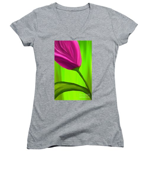 By Any Other Name Women's V-Neck (Athletic Fit)