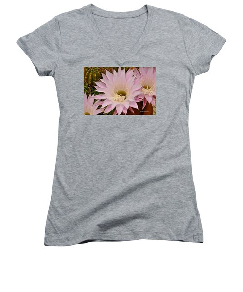 Cactus In The Backyard Women's V-Neck (Athletic Fit)