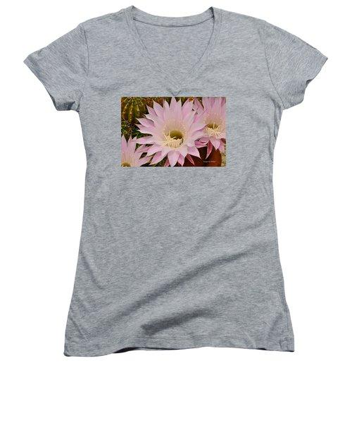 Cactus In The Backyard Women's V-Neck T-Shirt