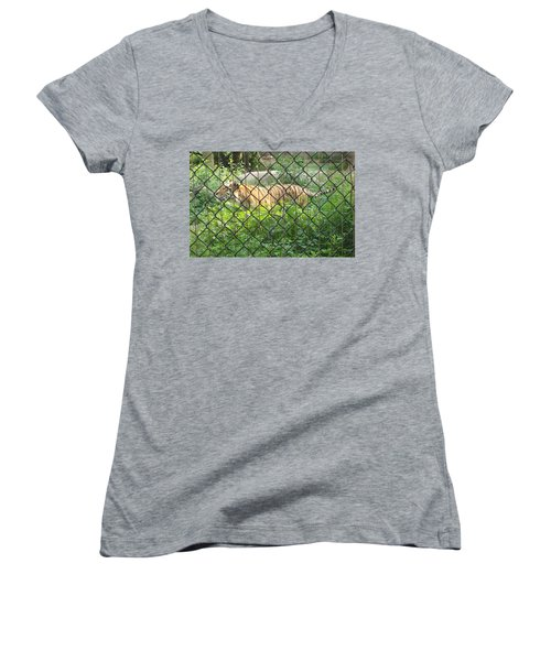 Women's V-Neck T-Shirt (Junior Cut) featuring the photograph Caged by Fortunate Findings Shirley Dickerson