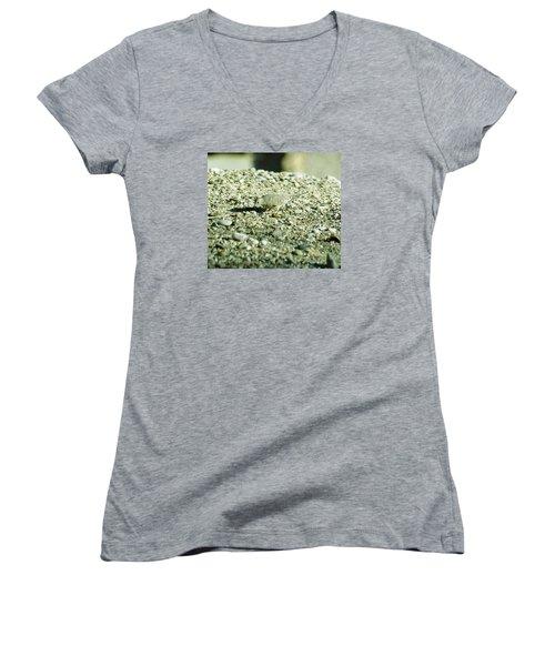 Arizona Camo Bird Women's V-Neck T-Shirt (Junior Cut) by Belinda Lee