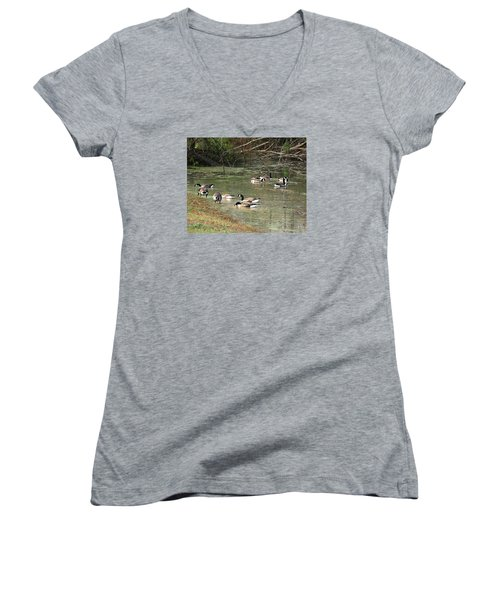 Canadian Geese Feeding In Backwaters Women's V-Neck T-Shirt (Junior Cut) by William Tanneberger