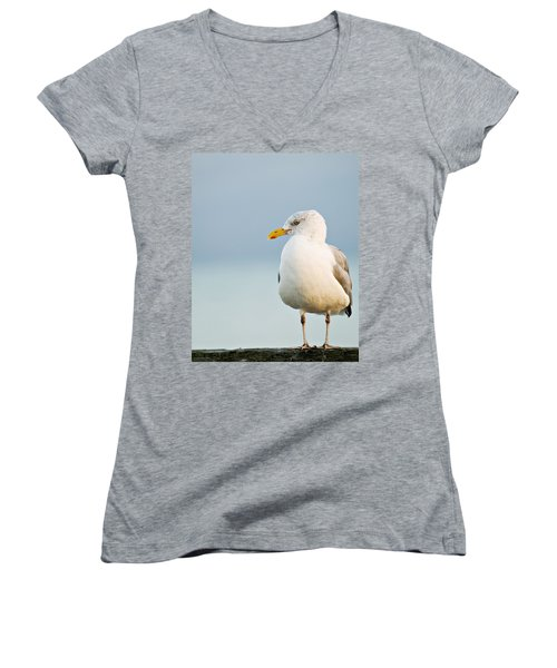 Cape Cod Seagull Women's V-Neck