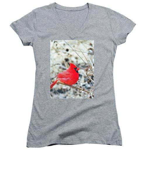 Cardinal Bird Christmas Card Women's V-Neck T-Shirt