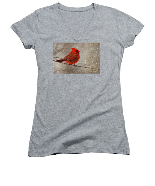 Cardinal In Snow Women's V-Neck T-Shirt (Junior Cut) by Lois Bryan