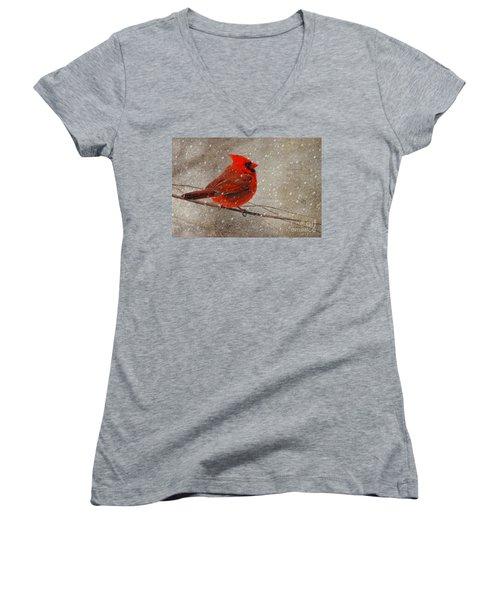 Cardinal In Snow Women's V-Neck