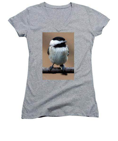 Women's V-Neck T-Shirt (Junior Cut) featuring the painting Carolina Chickadee by John Haldane