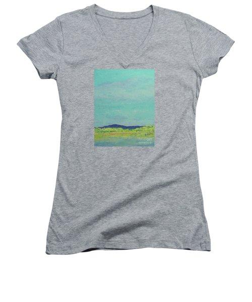 Carolina Spring Day Women's V-Neck T-Shirt (Junior Cut) by Gail Kent