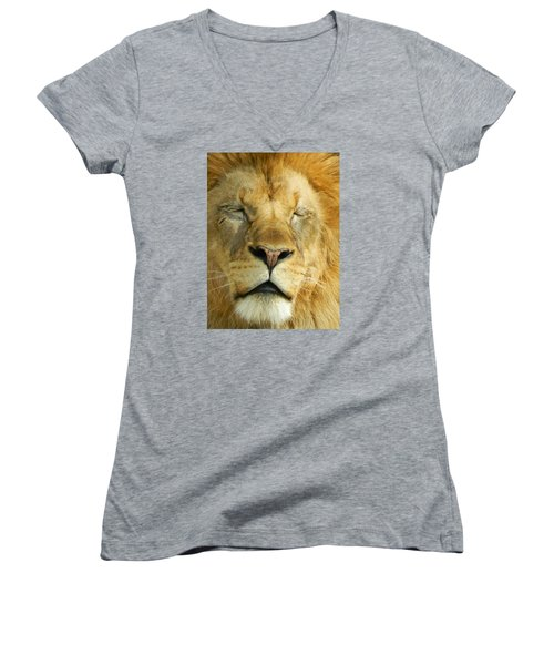 Cat Nap Women's V-Neck T-Shirt (Junior Cut) by Emmy Marie Vickers