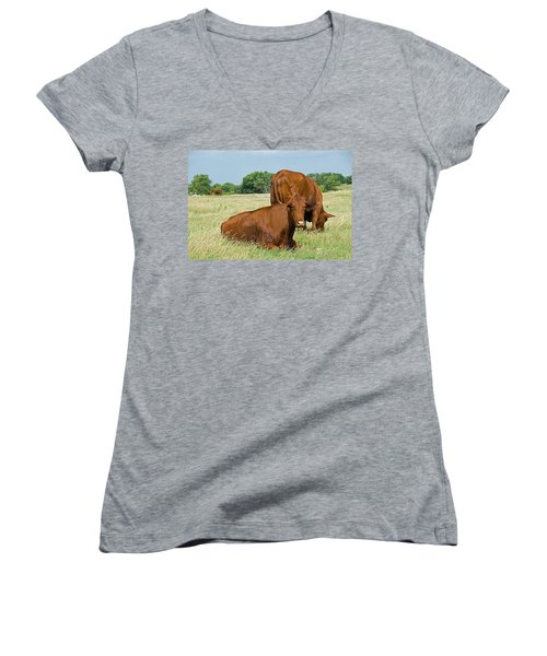 Women's V-Neck T-Shirt (Junior Cut) featuring the photograph Cattle Grazing In Field by Charles Beeler