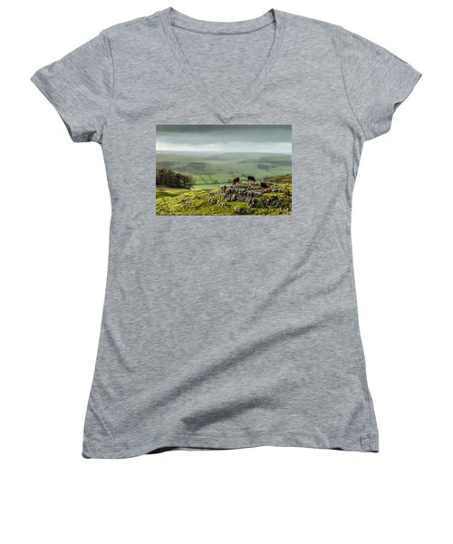 Cattle In The Yorkshire Dales Women's V-Neck
