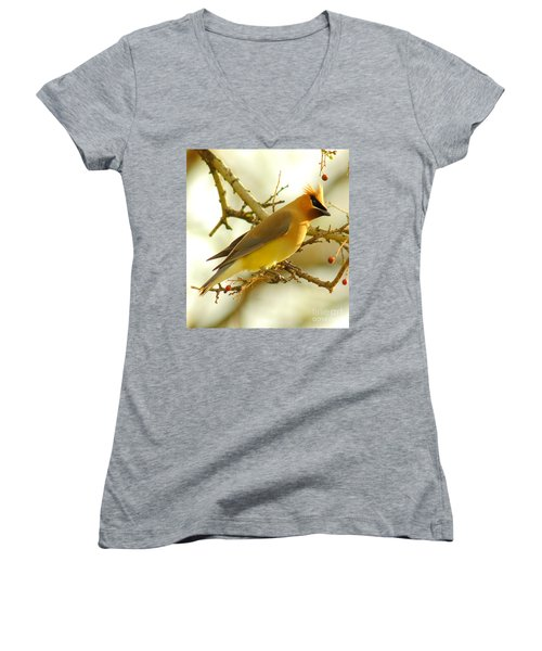 Cedar Waxwing Women's V-Neck T-Shirt (Junior Cut) by Robert Frederick