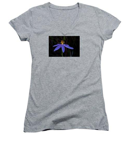 Celestial Lily Women's V-Neck T-Shirt