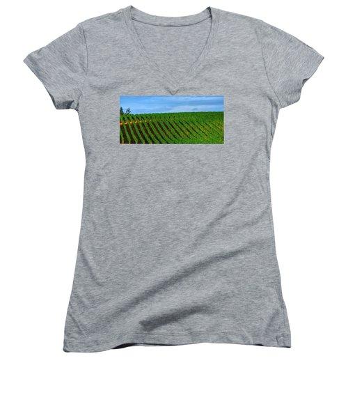 Chardonnay Sky 17990 Women's V-Neck T-Shirt (Junior Cut) by Jerry Sodorff