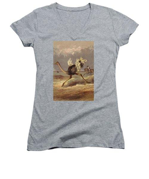 Chasing The Ostrich Women's V-Neck T-Shirt (Junior Cut) by English School