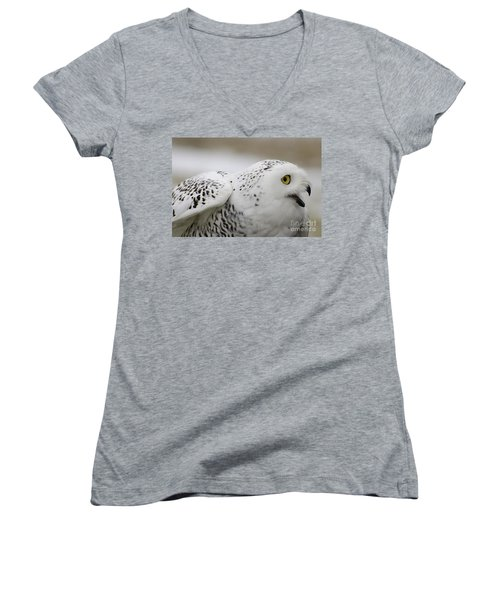 Cheeky Snow Owl Women's V-Neck (Athletic Fit)