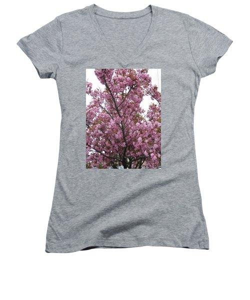 Cherry Blossoms 2 Women's V-Neck T-Shirt (Junior Cut) by David Trotter