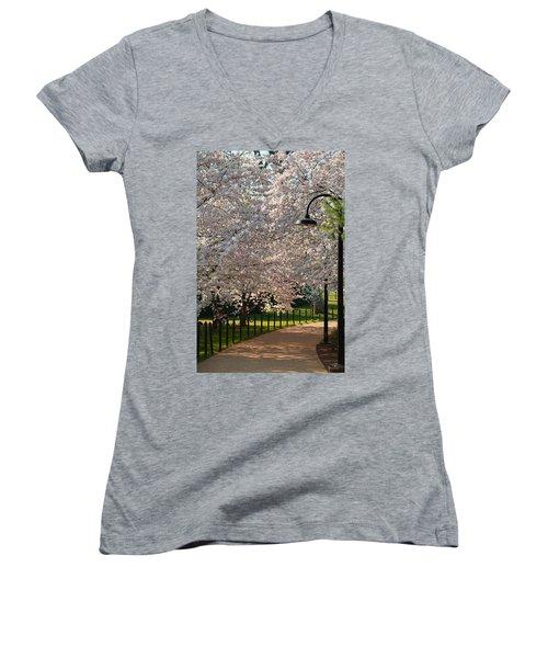 Cherry Blossoms 2013 - 060 Women's V-Neck