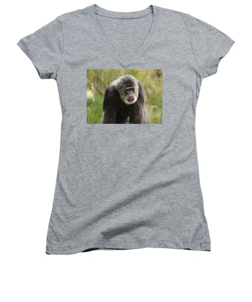 Chimpanzee Women's V-Neck (Athletic Fit)