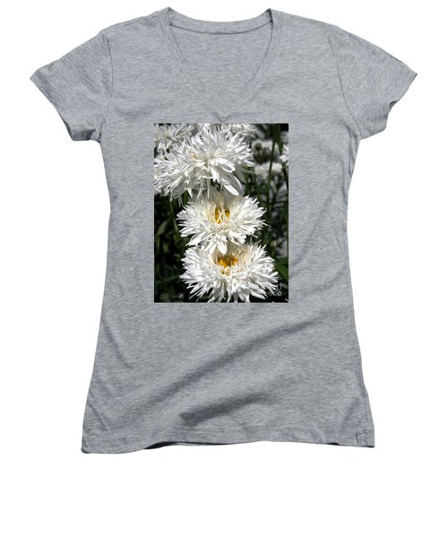 Chrysanthemum Named Crazy Daisy Women's V-Neck T-Shirt (Junior Cut) by J McCombie