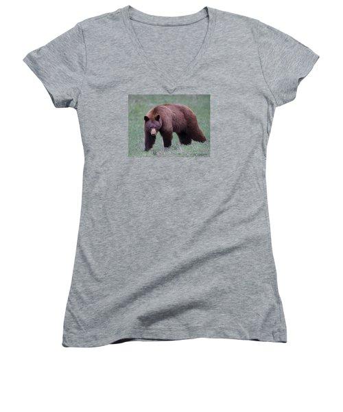 Cinnamon Black Bear Women's V-Neck T-Shirt (Junior Cut) by CR  Courson
