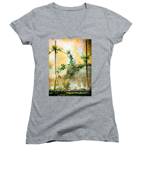Women's V-Neck T-Shirt (Junior Cut) featuring the photograph Climbing Rose Plant by Silvia Ganora