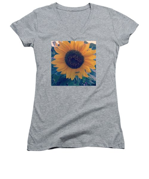 Women's V-Neck T-Shirt featuring the photograph Co-existing by Thomasina Durkay