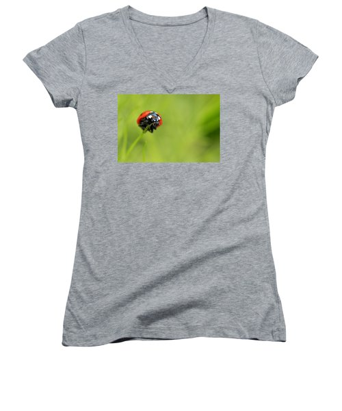 Coccinellidae  Women's V-Neck T-Shirt