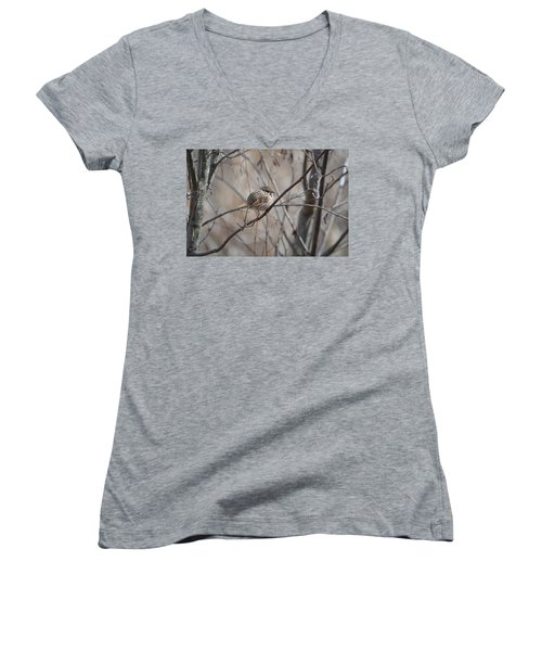 Cold Women's V-Neck T-Shirt