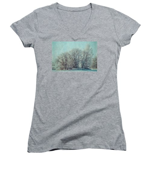 Cold Winter Day Women's V-Neck