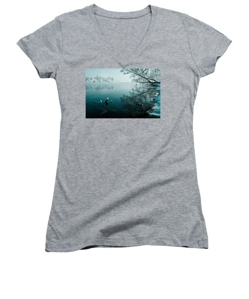 Color Of Ice Women's V-Neck T-Shirt