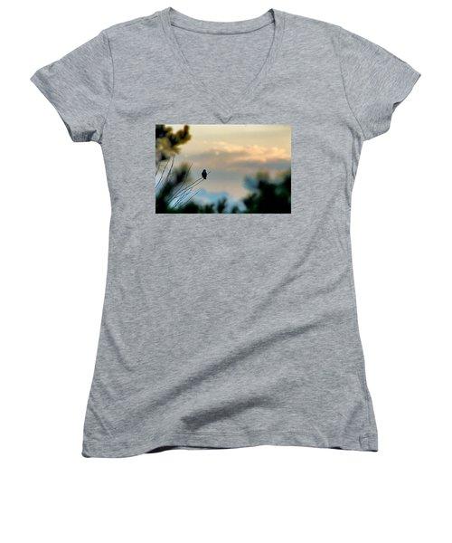 Contemplation Women's V-Neck T-Shirt