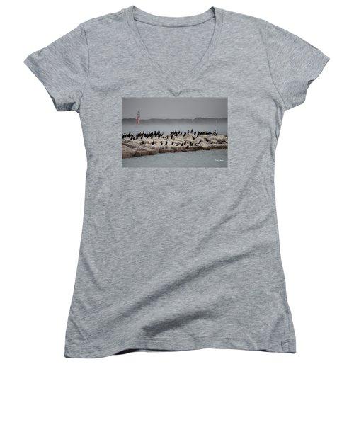 Women's V-Neck T-Shirt (Junior Cut) featuring the photograph Cormorant Island by Debra Martz