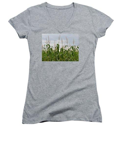Corn Field Women's V-Neck T-Shirt (Junior Cut) by Laurel Powell