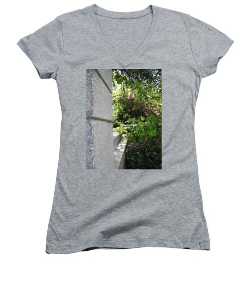 Corner Garden Women's V-Neck T-Shirt (Junior Cut) by David Trotter