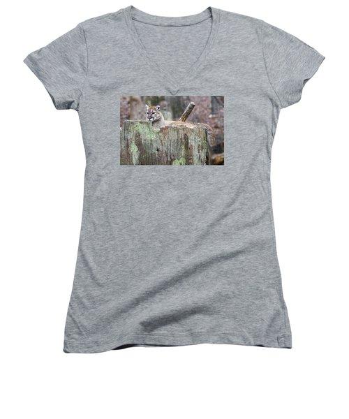 Cougar On A Stump Women's V-Neck