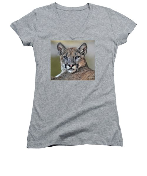 Women's V-Neck T-Shirt (Junior Cut) featuring the photograph Cougar  by Savannah Gibbs