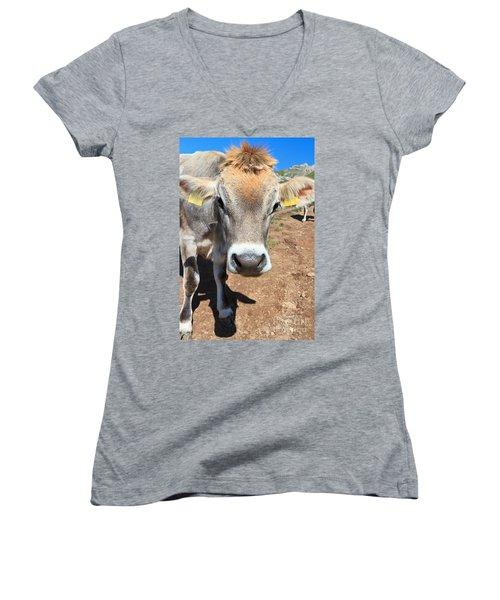 Cow On Alpine Pasture Women's V-Neck T-Shirt (Junior Cut) by Antonio Scarpi
