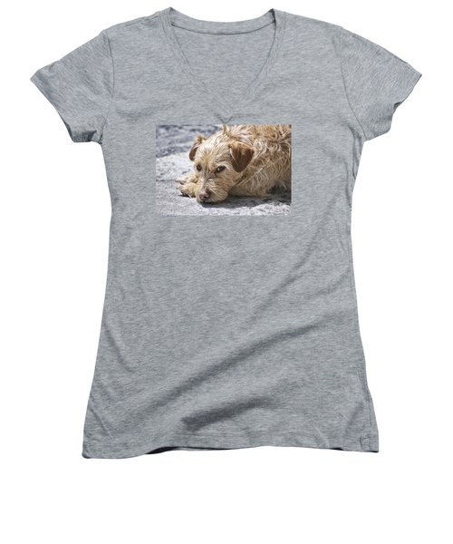 Women's V-Neck T-Shirt (Junior Cut) featuring the photograph Cruz You Looking At Me by Thomas Woolworth